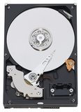 Жёсткий диск HDD 640Gb Western Digital WD6400AAKS в интернет магазине